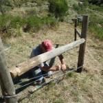 Wwoofing downunder 2011-03-1516
