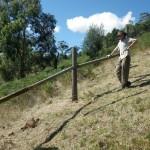 Wwoofing downunder 2011-03-1518